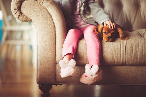 jeune fille, chien, beauté