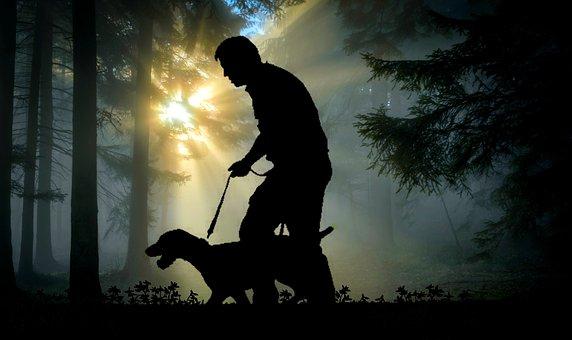 à pied, l'homme, chien