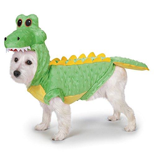 Les 5 meilleurs deguisement pour chien 1