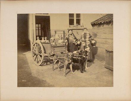 conteneurs, récipients à boire, chariots