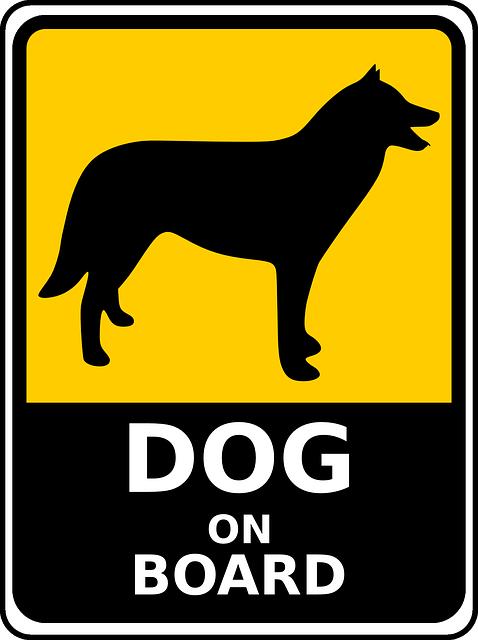 chien, husky, inscrivez vous