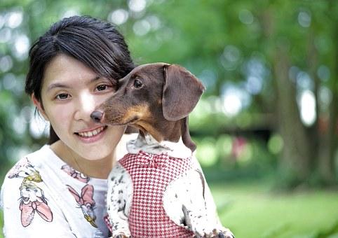 fille et le chien, jeune fille, chien