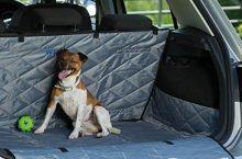 Les 5 meilleurs housse chien voiture