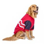 Les 5 meilleurs robe pour chien