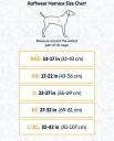 Les 5 meilleurs harnais chien