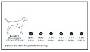 Les 5 meilleurs veste chien